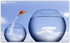 Goldfish Jumping Into Larger Bowl
